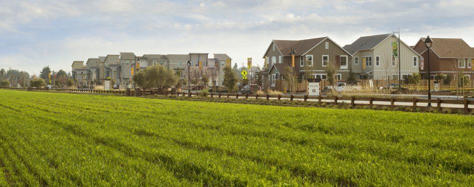 affordable housing based around an urban farm